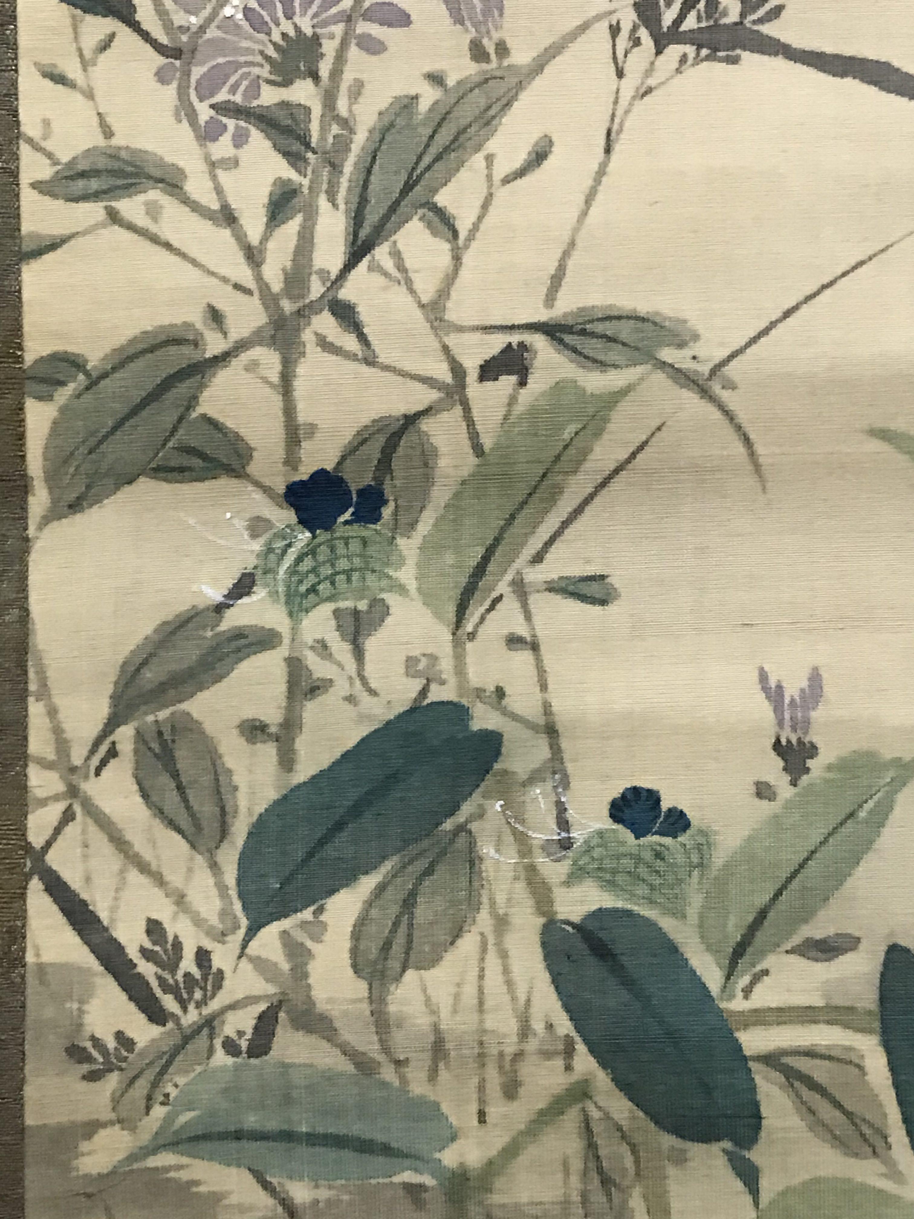 森一鳳 蜻蛉秋草図