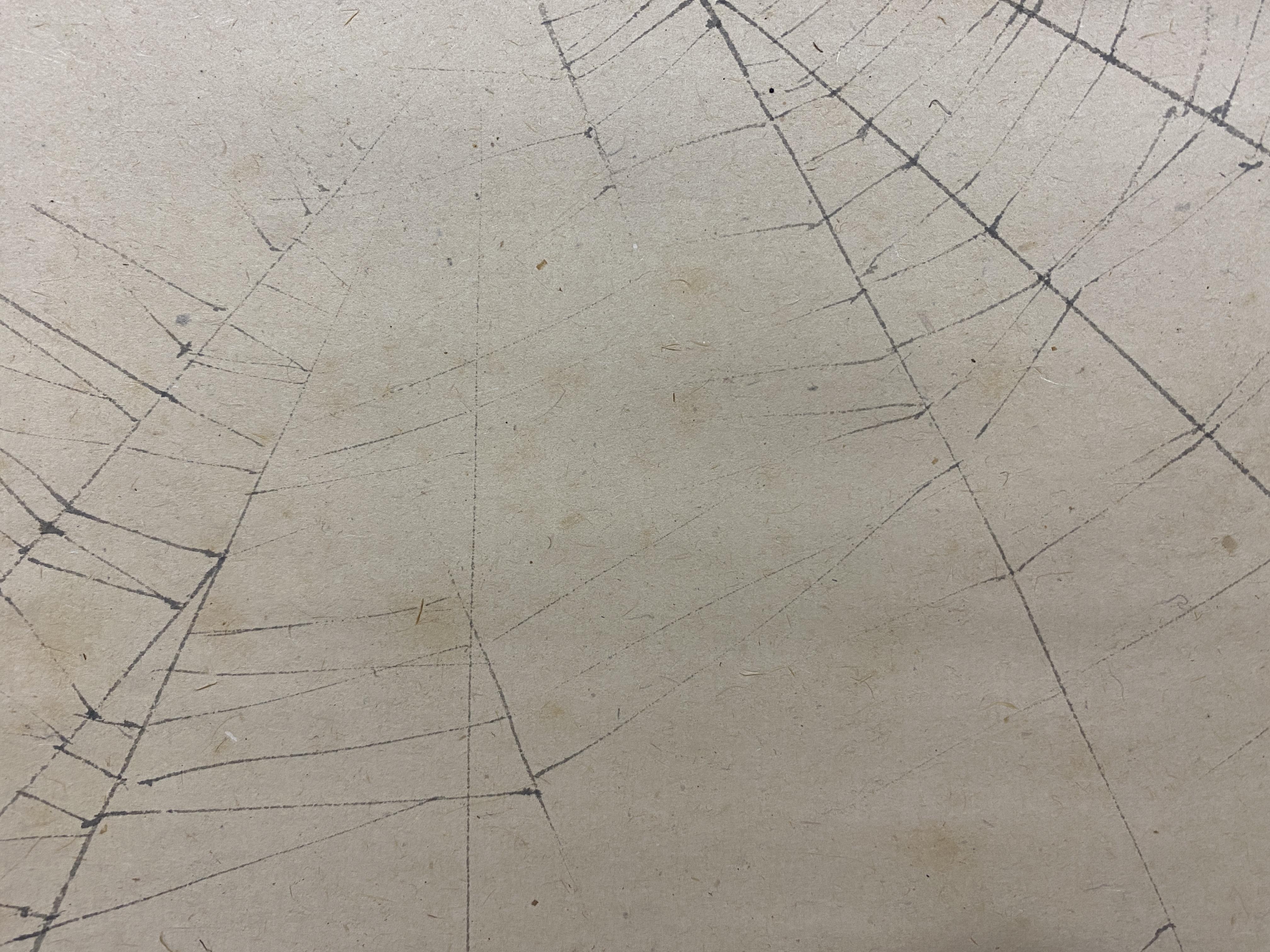 奥谷秋石筆 蜘蛛図